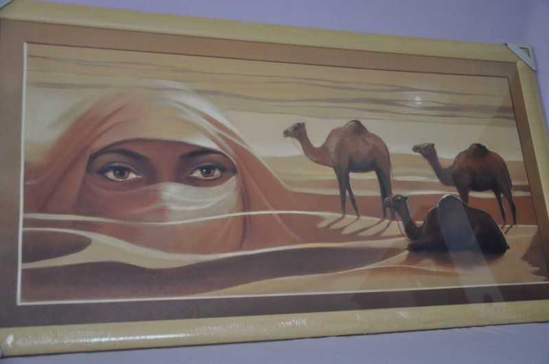 Obraz Sahara 107x57 světlý rám O11 SLEVA 7 % | RYCHLÉ DODÁNÍ