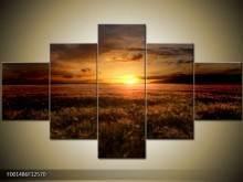 Obraz na zeď - západ slunce (AKČNÍ CENA)