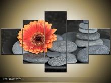 Obraz na zeď kytka s kameny - 5 dílný (AKČNÍ CENA)